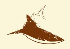 Priorità bassa dello squalo Fotografia Stock