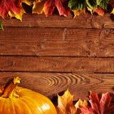Priorità bassa di autunno Fotografie Stock Libere da Diritti