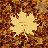 Fondo di autunno Fotografia Stock Libera da Diritti