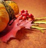 Priorità bassa di autunno Fotografie Stock