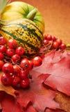Priorità bassa di autunno Immagine Stock