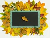 Priorità bassa di autunno Blocco per grafici variopinto dei fogli di autunno Lavagna sul fondo delle foglie di autunno Fotografia Stock Libera da Diritti