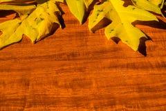 Priorità bassa di autunno con i fogli colorati sulla scheda di legno Immagini Stock
