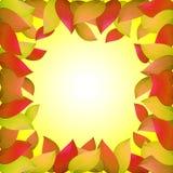 Priorità bassa di autunno con i fogli gialli Modelli per i cartelli, insegne, alette di filatoio, presentazioni, rapporti Illustr Fotografia Stock