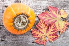 Priorità bassa di autunno con la zucca sulla scheda di legno Fotografie Stock Libere da Diritti