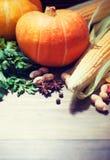 Priorità bassa di autunno con le zucche Immagini Stock