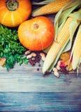 Priorità bassa di autunno con le zucche Immagine Stock Libera da Diritti