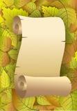 Priorità bassa di autunno dei fogli gialli Immagini Stock