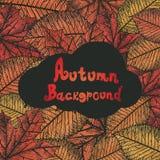 Priorità bassa di autunno oggetti Fotografia Stock Libera da Diritti