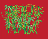 Priorità bassa di bambù Immagini Stock Libere da Diritti