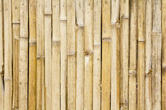 Priorità bassa di bambù della parete Immagini Stock