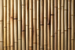 Priorità bassa di bambù di legno Immagini Stock Libere da Diritti
