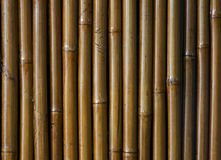 Priorità bassa di bambù verniciata Immagine Stock Libera da Diritti