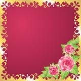 Priorità bassa di bellezza della Rosa Fotografie Stock
