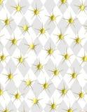 Priorità bassa di burst della stella di art deco royalty illustrazione gratis