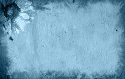 Priorità bassa di carta del fiore e vecchia di struttura Fotografia Stock Libera da Diritti