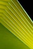 Priorità bassa di carta gialla II di struttura fotografie stock