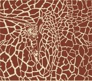 Priorità bassa di colore del reticolo della giraffa Fotografie Stock Libere da Diritti