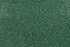Priorità bassa di cuoio verde di struttura Foto del primo piano Fotografie Stock Libere da Diritti