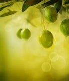 Priorità bassa di disegno delle olive fotografia stock