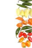 Priorità bassa di disposizione dei peperoni caldi Fotografia Stock