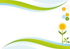 Priorità bassa di energia di Eco. Fotografie Stock
