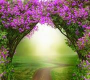 Priorità bassa di fantasia Foresta magica con la strada illustrazione vettoriale