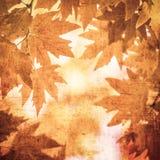 Priorità bassa di Grunge con i fogli di autunno Immagine Stock Libera da Diritti