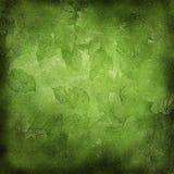 Priorità bassa di Grunge con i fogli verdi Fotografia Stock Libera da Diritti