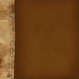 Priorità bassa di Grunge con il bordo di carta per il disegno Fotografia Stock