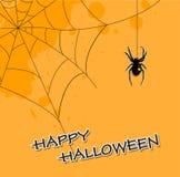 Priorità bassa di Halloween con il ragno Fotografie Stock