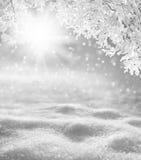 Priorità bassa di inverno Immagini Stock Libere da Diritti