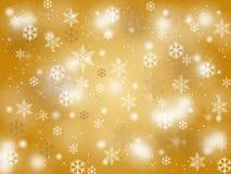 Priorità bassa di inverno Fotografie Stock Libere da Diritti