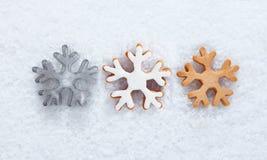 Priorità bassa di inverno con i fiocchi di neve Fotografia Stock