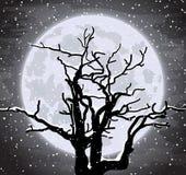 Priorità bassa di inverno con l'illustrazione di tree Immagini Stock