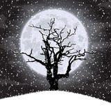 Priorità bassa di inverno con l'illustrazione di tree Fotografia Stock Libera da Diritti