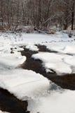 Priorità bassa di inverno con un fiume congelato Fotografia Stock