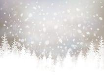 Priorità bassa di inverno di vettore Immagine Stock Libera da Diritti