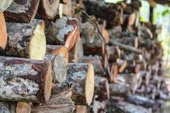 Priorità bassa di legna da ardere tagliata asciutta Immagini Stock Libere da Diritti