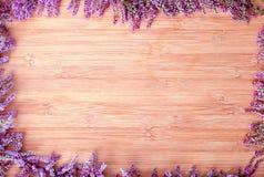 Priorità bassa di legno Immagini Stock Libere da Diritti