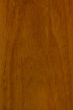 Priorità bassa di legno. Immagine Stock Libera da Diritti