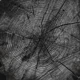 Priorità bassa di legno astratta Fotografie Stock