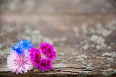 Priorità bassa di legno con i fiori fotografie stock libere da diritti