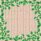 Priorità bassa di legno con il blocco per grafici floreale verde Fotografia Stock