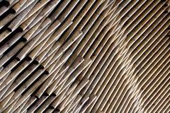 Priorità bassa di legno dei libri macchina. Fotografie Stock Libere da Diritti