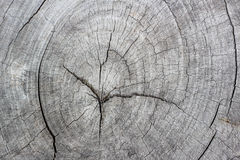 Priorità bassa di legno del reticolo Fotografie Stock