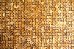Priorità bassa di legno della parete Fotografie Stock Libere da Diritti