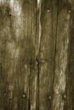 Priorità bassa di legno della parete con i chiodi arrugginiti Fotografie Stock