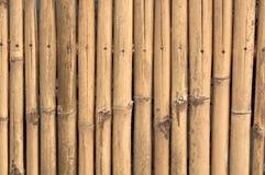 Priorità bassa di legno di bambù della parete Fotografia Stock Libera da Diritti