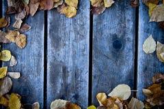Priorità bassa di legno di caduta Fotografia Stock